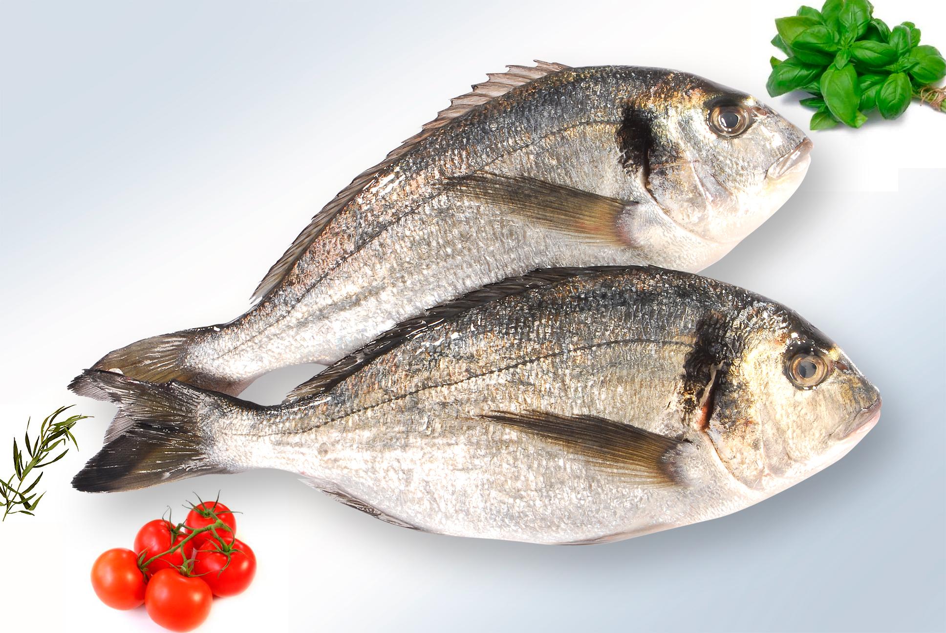 Cuisson poissons top cuisson temps de cuisson page 2 for Dorade en papillote au barbecue